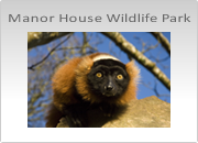Manor House Wildlife Park Photography Workshops